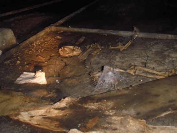 More skeletons in the crawl space.