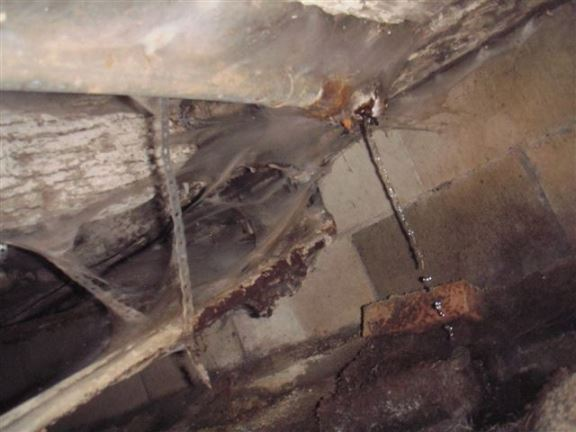 This is a typical water leak under a bathtub drain.
